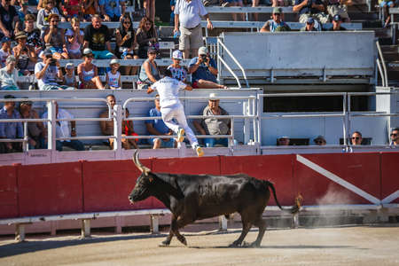 Traditional games in Arles. Men running and fighting against a Camargue-bull in the arena. Arles, France - July 27 2016. 新闻类图片