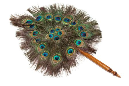 veer: Veer from feather of the peacock with wooden handle on white background Stock Photo