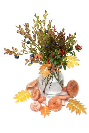 Branches of the whortleberry and cowberries in transparent vase, mushrooms photo