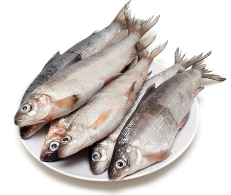 Fresh fish whitefish on plate on white background photo