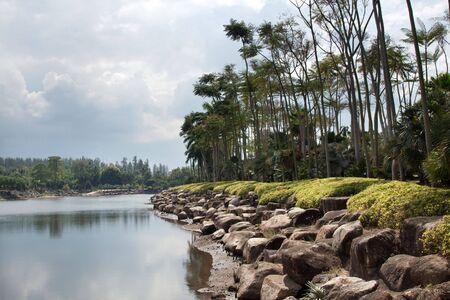 Tropical river, stone coast, palms, dull sky photo