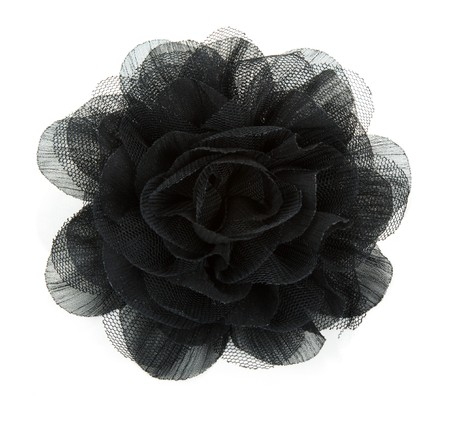 Black flower rose from lace on white background photo