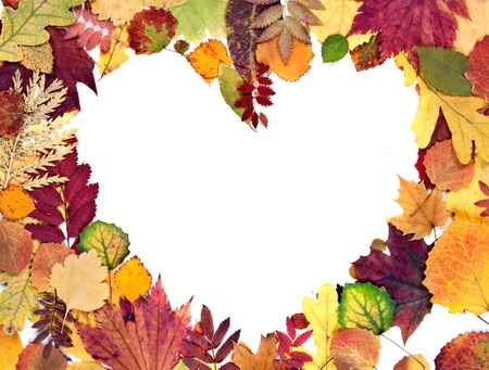 form the heart of autumn leaves background photo