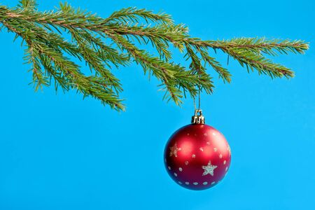 fir branches and Christmas ball on a blue background photo