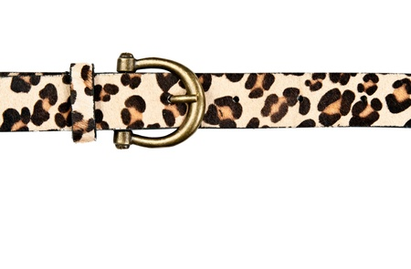 buckle: belt with leopard pattern isolated on white background
