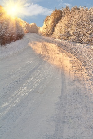 winter road in the light of the sun photo