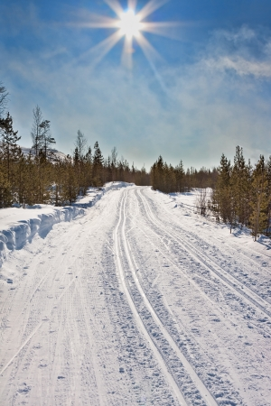 empty trails for cross-country skiing and winter sun photo