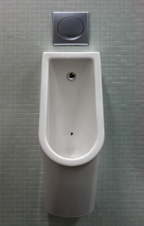 flushing: urinal with white painted a fly on the toilet in the tiled wall