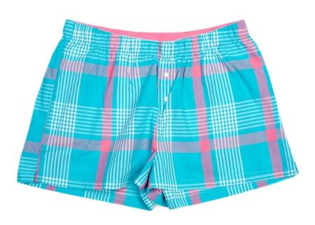 undergarment: The blue plaid shorts. Isolate on white