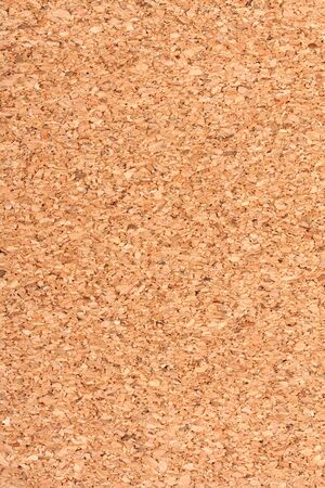 Large cork background for your design photo