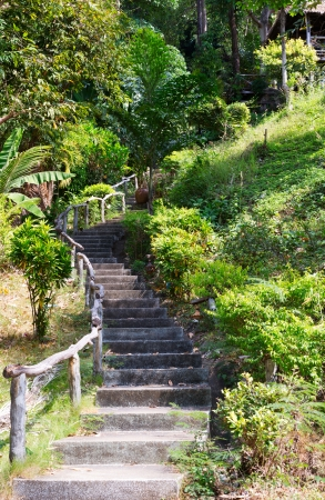hand rail: stone staircase with wooden hand rail in the jungles of Thailand Stock Photo