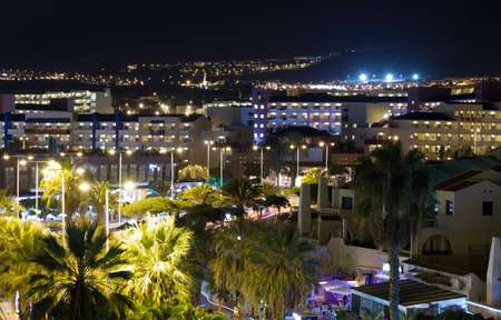 adeje: View the city at night Costa Adeje with palm trees.