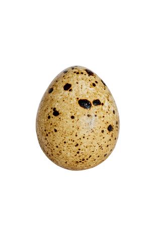 dietary quail egg