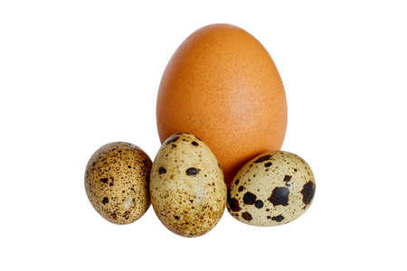 quail and chicken eggs on white background Imagens