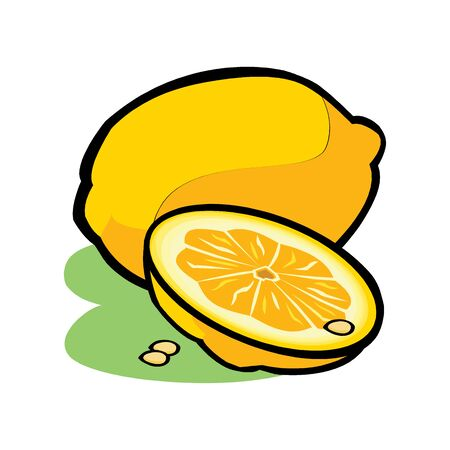 Lemon with leaves isolated on white background. Vector illustration for decorative poster, emblem natural product, farmers market. Perfect for packaging design of cosmetics and food. Çizim