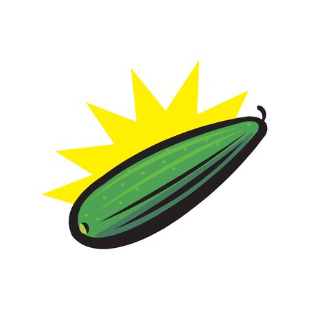 Zucchini green vegetable. Summer squash icon on white background. Marrow squash.