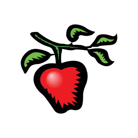 Red apple vector illustration in EPS10