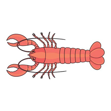 vector lobster clip art logo illustration isolated on white background in EPS10