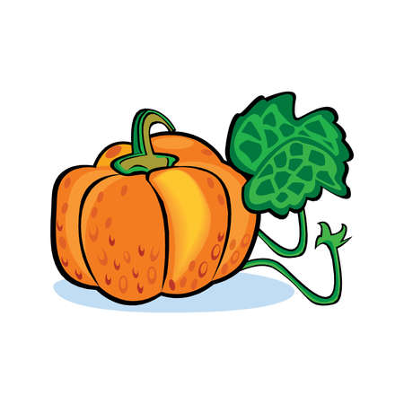 Glossy cartoon pumkin. Vector EPS10 illustration. Illustration
