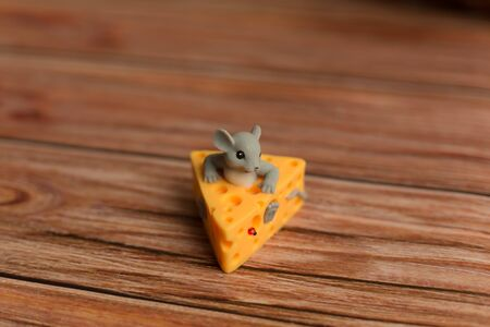 Mouse sitting in the cheese on the background of wooden boards.