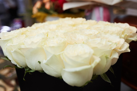 a bouquet of white roses on a table in a beautiful package Stock Photo