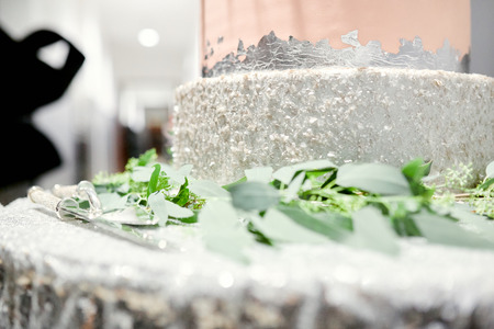 the bottom of the beautiful silver cake decorated with greens on the table at a wedding