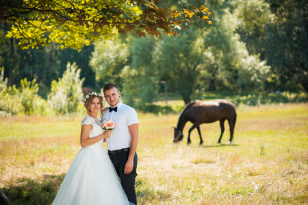 Newlyweds hug standing behind a horse on the field somewhere in the moutains