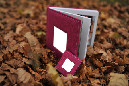 beautiful photo album in dark pink textile cover on autumn leaves. with mini copy book Stock Photo