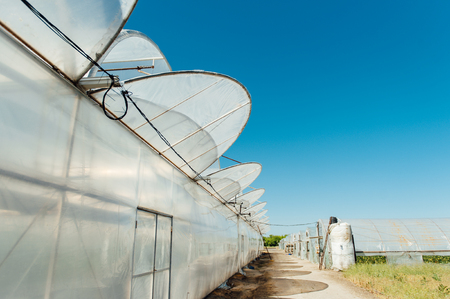 polycarbonate: row of melon greenhouse with blue sky. Stock Photo
