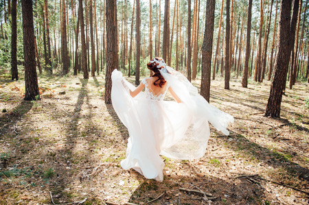 Bride in white wedding dress walking in forest. Fashion and nature background.