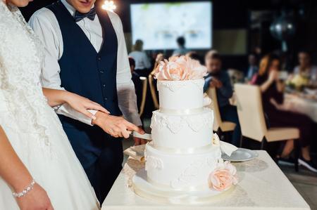 Wedding ceremony. Bride and groom cutting cake. Stock Photo