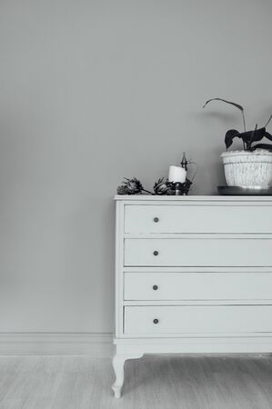 chic chest of drawers with home plants and decoration in a spacious room