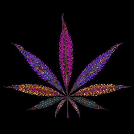 Marijuana. Color vector marijuana leaf patterns