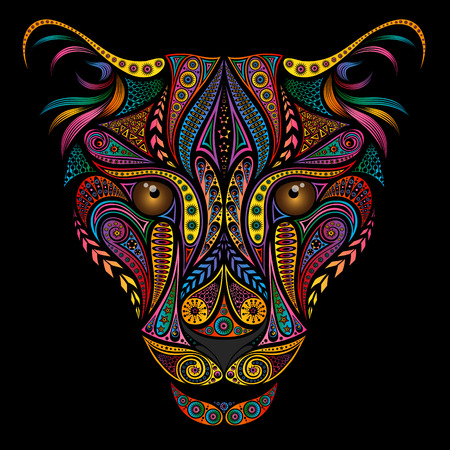 Color leopard from beautiful various patterns Illustration