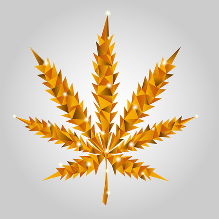 Gold leaf of marijuana from glass slices on grey backdrop