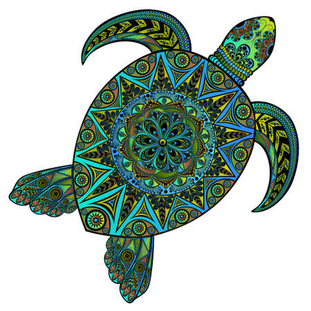Beautiful color vector turtle in style