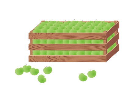 green apples: Wooden box with green apples harvesting fruit