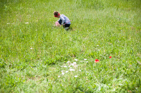 butterfly net: girl with a butterfly net catching insects in the meadow Stock Photo