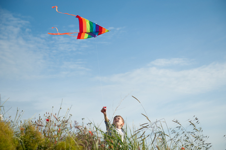 funny little beautiful boy holding flying colorful kite standing on field and sky background