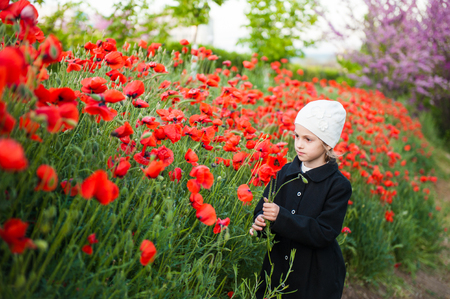 beautiful french little girl in hat and coat tears red flowers on poppy field in early spring