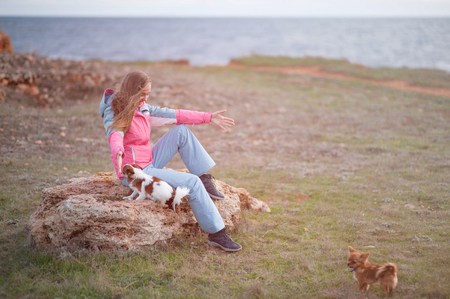 delightful young woman playing with her little chihuahua pet companion dogs on cold sea shore winter