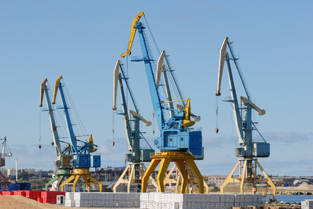 high tower cranes in sea port with products