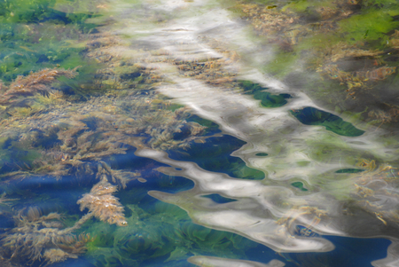 concept of dirty water of sea with oil spots on surface ecological disaster Stok Fotoğraf - 116435662