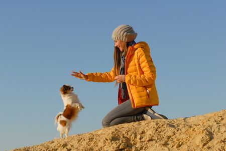 canine obedience training by happy young woman in hat and jacket showing orders with hand for small chihuahua dog standing on hinder legs Stok Fotoğraf