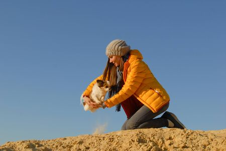 active little chihuahua dog jumping over girl owner hands during agility training on autumn sand with blue sky background