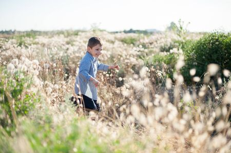 happy smiling small kid running among dry and green grass in summer field 写真素材 - 143221016
