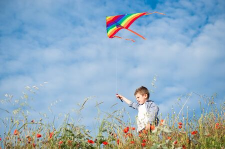 cute active small boy in shirt standing among flower fields with multicolored flying kite on vivid summer blue sky background