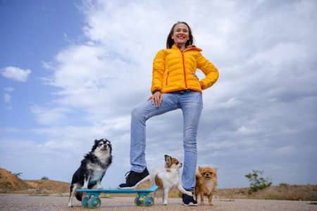 Beautiful young smiling happy woman in yellow autumn jacket and blue jeans standing with skateboard and three chihuahua pet dogs on cloudy sky Stock Photo