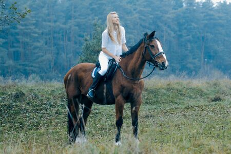 woman horse: Romantic girl in a white horse. beautiful girl and a horse
