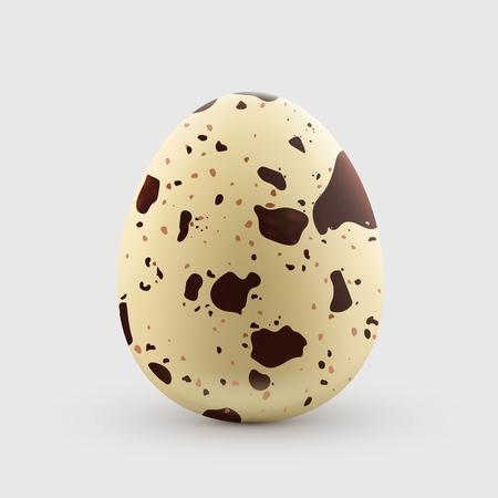 메 추 라 기 계란 흰 배경에 고립입니다. 건강하고 자연적인 음식. 벡터 일러스트 레이 션